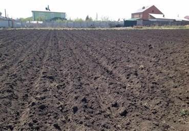 Подготовка почвы под картофель осенью после сбора урожая