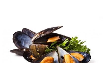 Блюда из мидий рецепты с фото на 374