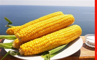 Как и сколько варить кукурузу в кастрюле чтобы она была мягкая