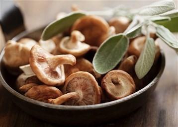 Как готовить грибы шиитаке полезные свойства и рецепты супа