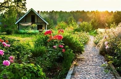 Оформление клумбы с розами полезные советы и 65 фото